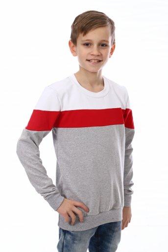 Свитшот Хайт-2 (Серый, красный, белый) - Дамит